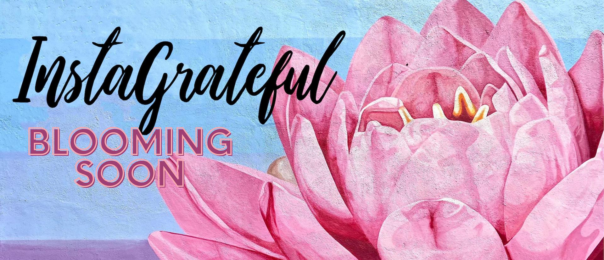 InstaGrateful by Sheri Fink: Blooming Soon